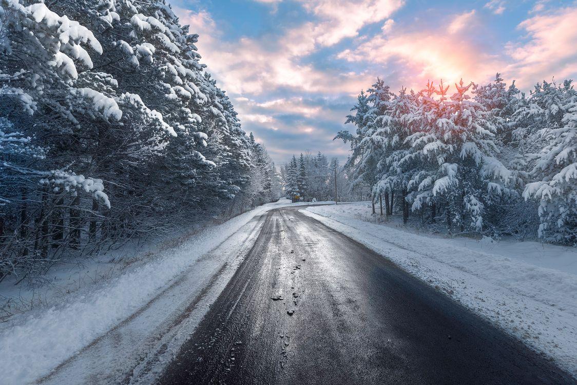 Деревья в снегу и утренняя поездка · бесплатная заставка