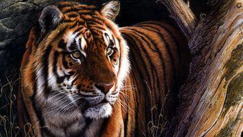 Фото бесплатно тигр, произведение искусства, хищник