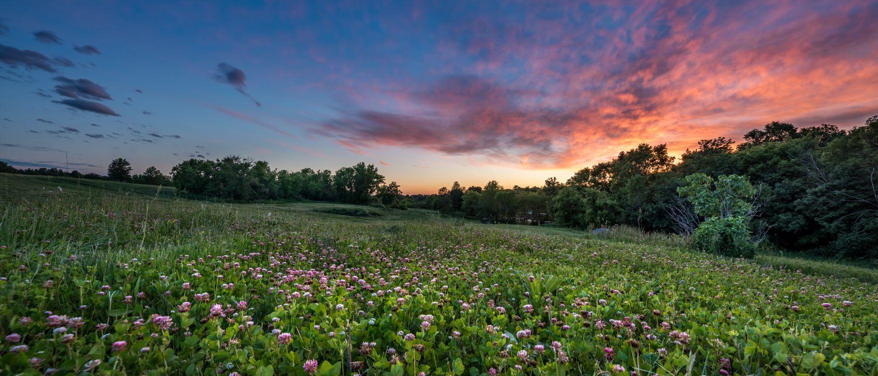 Фото бесплатно закат, панорама, деревья - на рабочий стол
