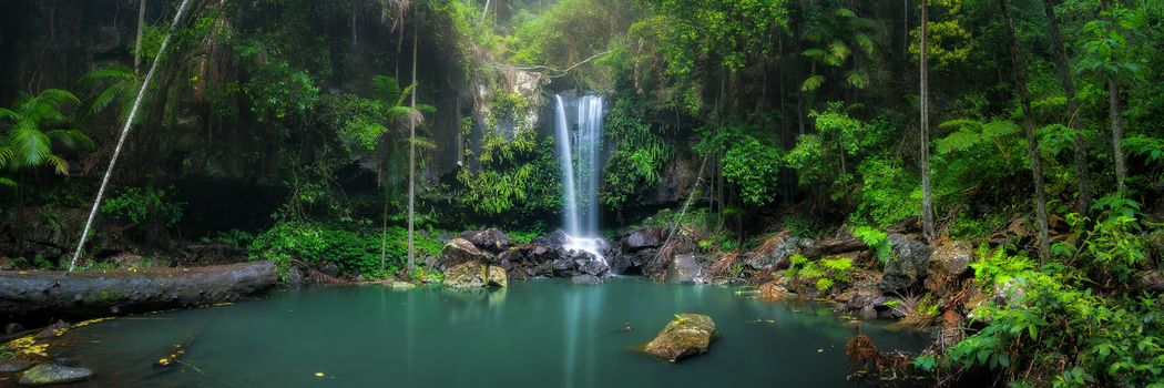Photo free tropical forest, waterfall, landscape