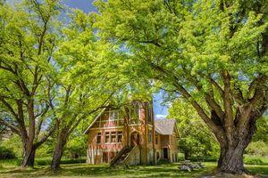 Бесплатные фото красивый дом, поляна, деревья, фазенда, сад, пейзаж