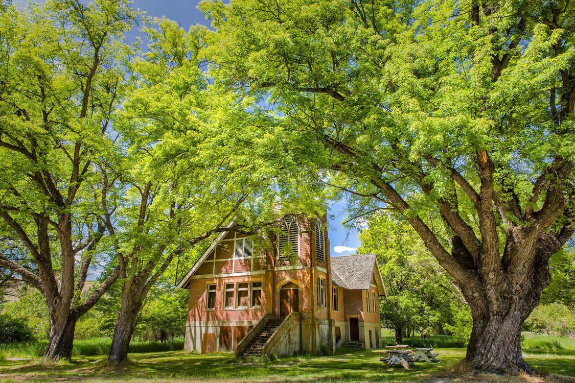 Фото бесплатно красивый дом, поляна, деревья, фазенда, сад, пейзаж, пейзажи