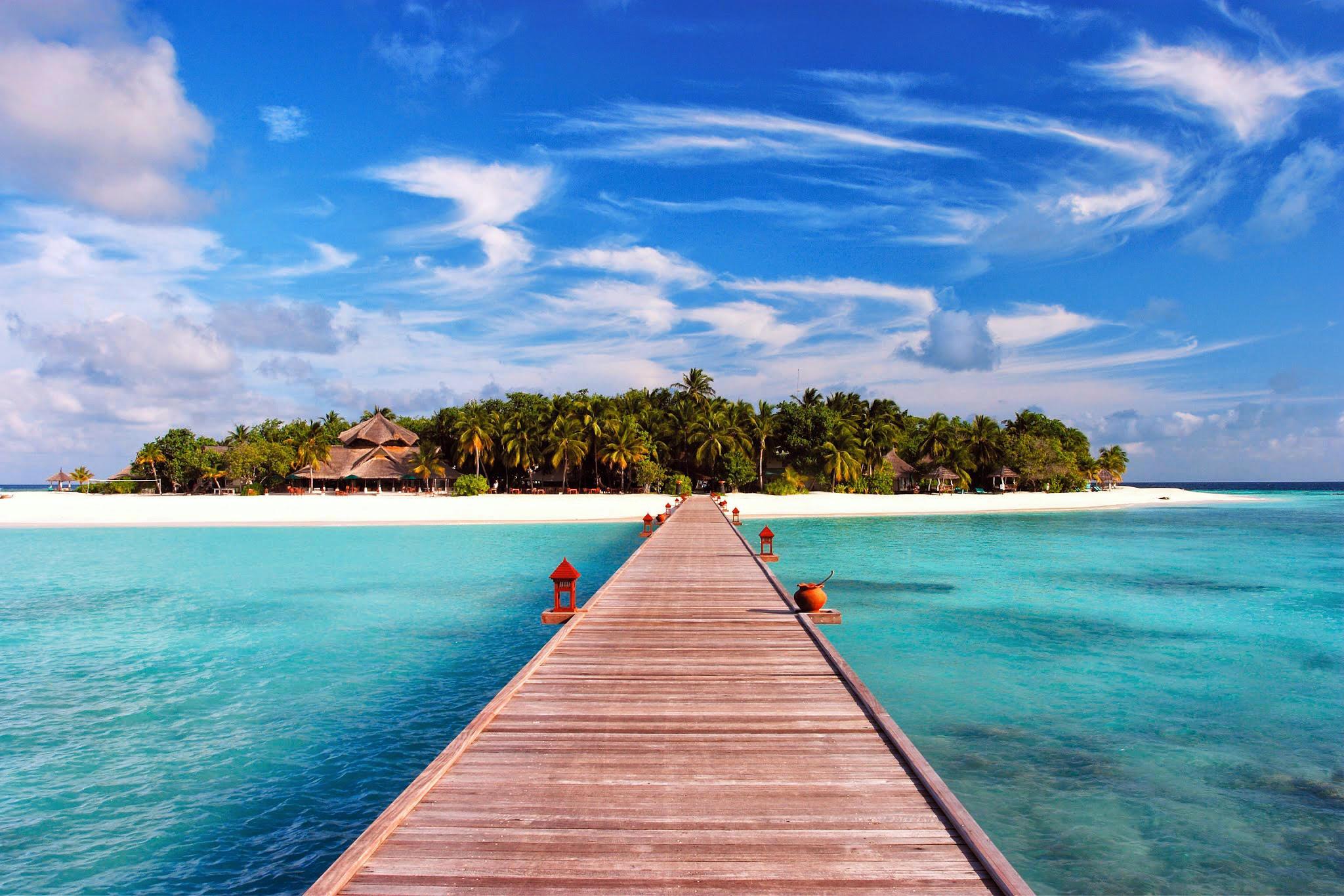 Обои море, песок, пляж, пальмы