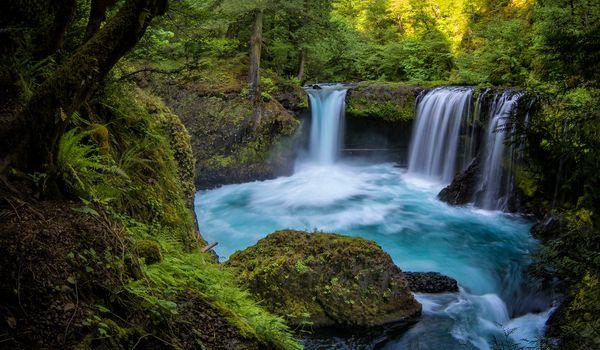 Заставки Columbia River Gorge, Spirit Falls, лес