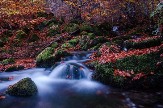 Photo free autumn waterfall, stones, trees