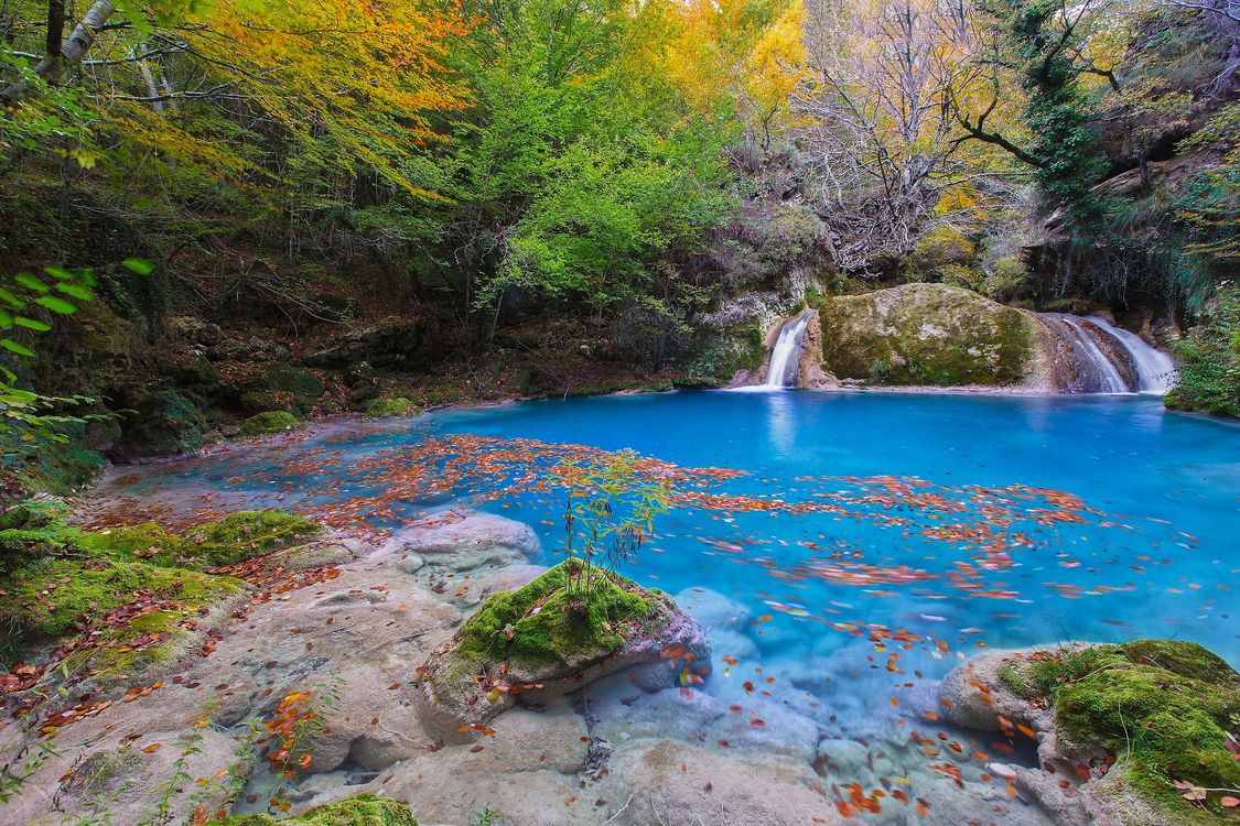 Картинка осень, лес, деревья, водоём, водопад, пейзаж на рабочий стол. Скачать фото обои пейзажи