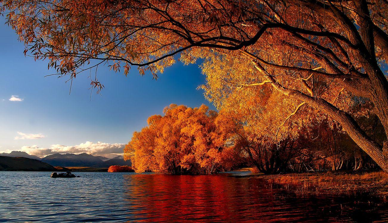Фото Новая Зеландия озеро Текапо размышления - бесплатные картинки на Fonwall