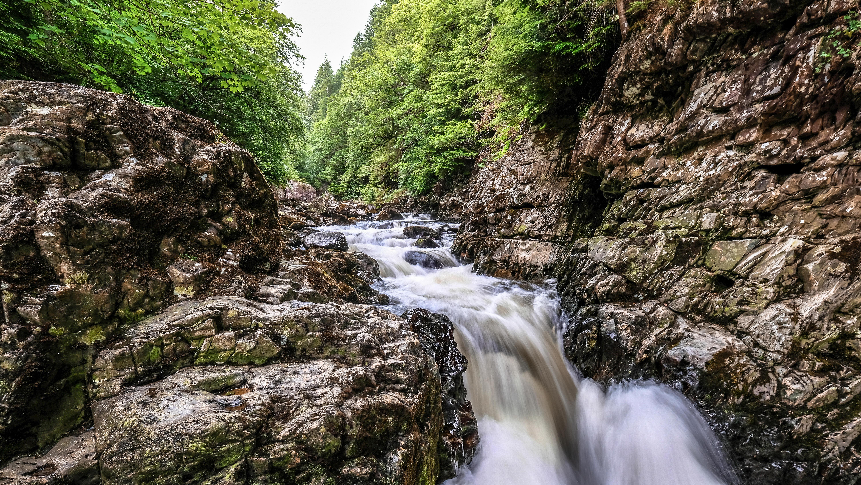 Обои лес, деревья, скалы, водопад