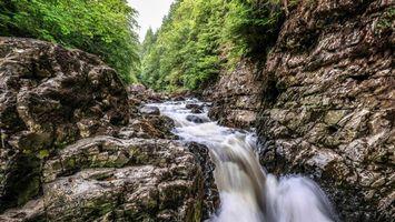 Заставки лес, деревья, скалы, водопад, природа