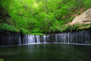 Бесплатные фото водопад,лес,деревья,пейзаж