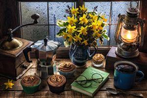 Бесплатные фото цветы,ваза,лампа,очки,пироженые,кофемолка,натюрморт