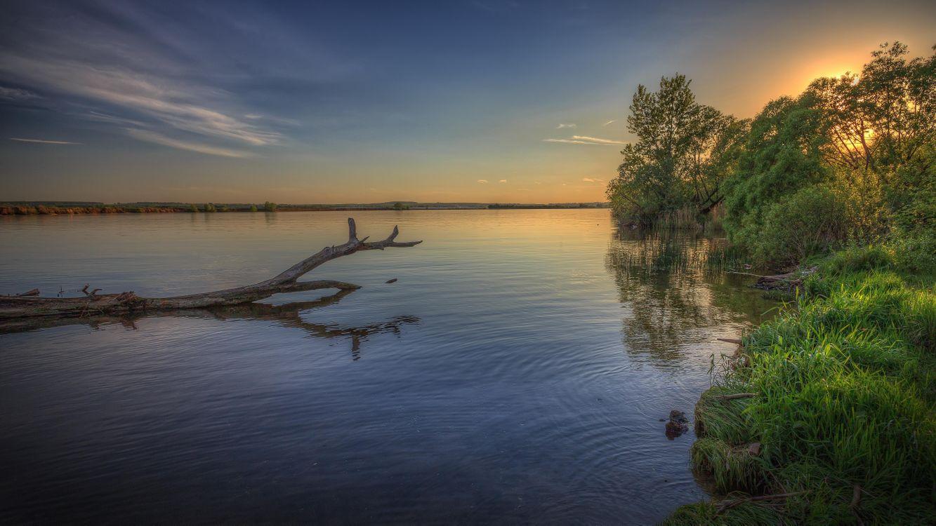 Фото бесплатно Московская область, Россия, Подмосковье, закат, озеро, деревья, пейзаж, пейзажи