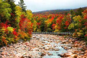 Бесплатные фото осень,река,мост,лес,деревья,камни,пейзаж