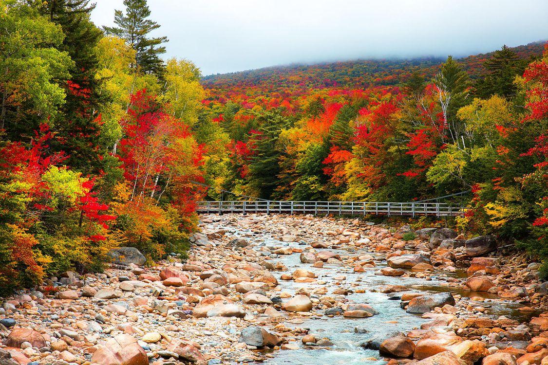 Фото бесплатно осень, река, мост, лес, деревья, камни, пейзаж, пейзажи