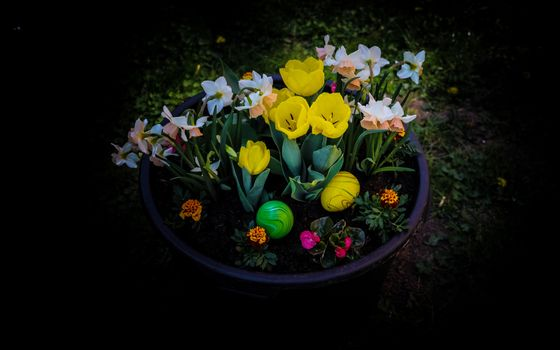 Photo free flower, easter, egg