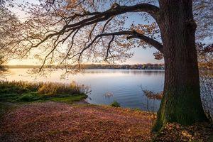 Фото бесплатно осень, озеро, закат
