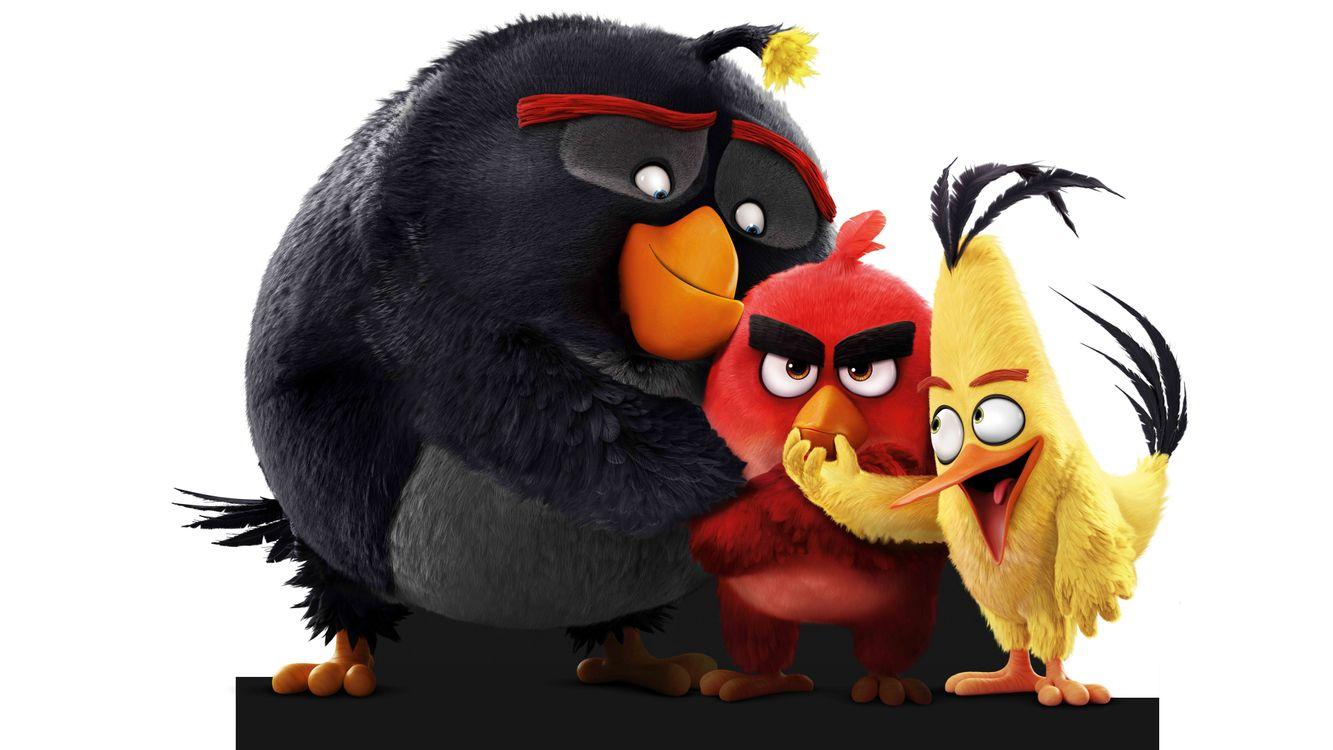 Фото бесплатно Angry Birds, Birds, фильмов - на рабочий стол