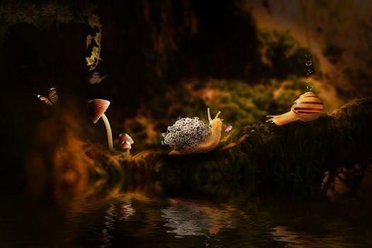 Фото бесплатно водоём, улитки, бабочка