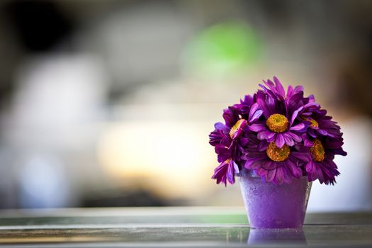 Photo free purple, vase, petals