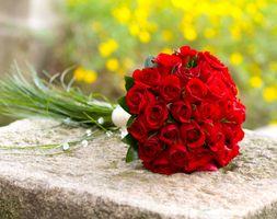 красивый букет роз · бесплатное фото
