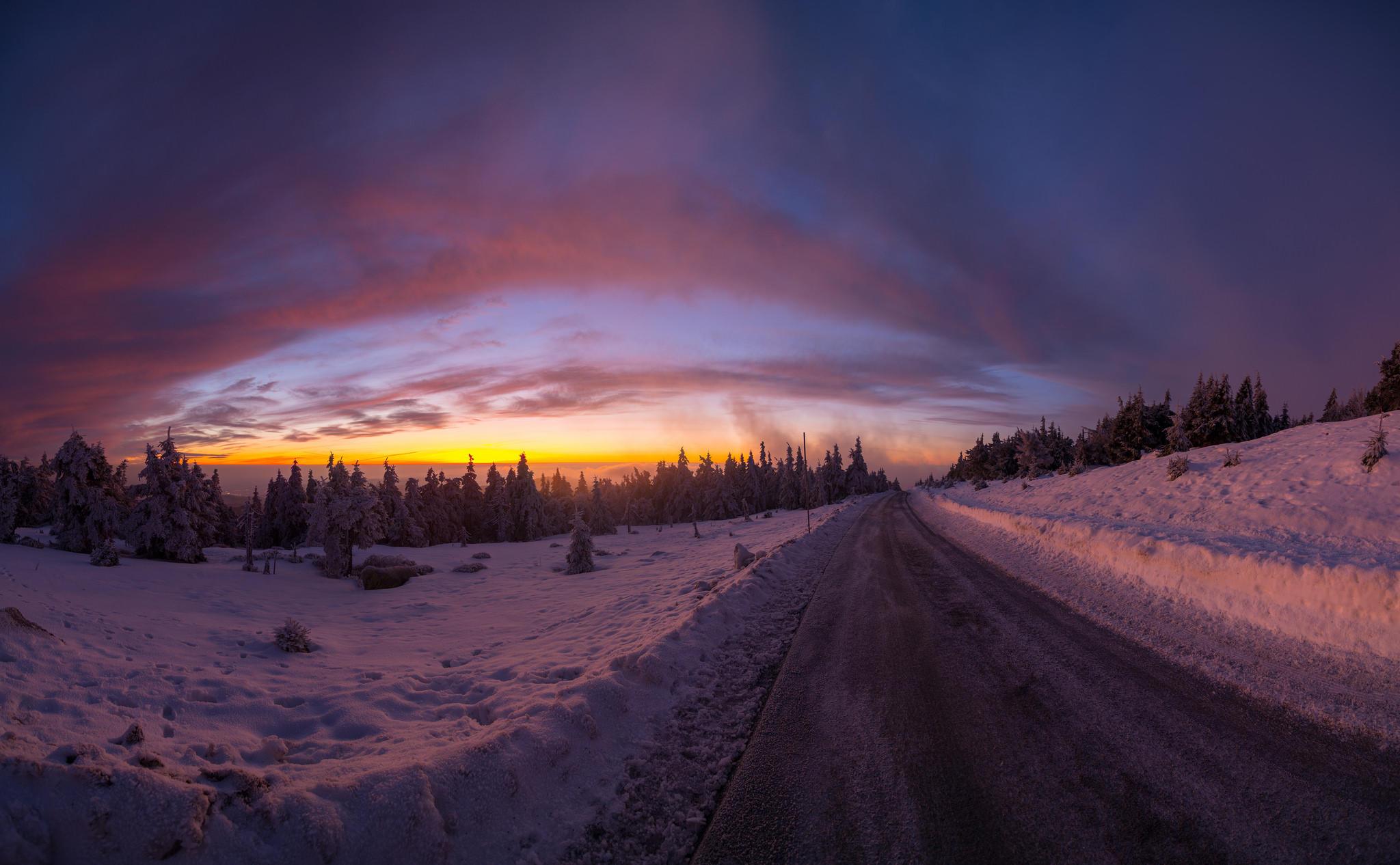 Обои зима, закат, лес, деревья