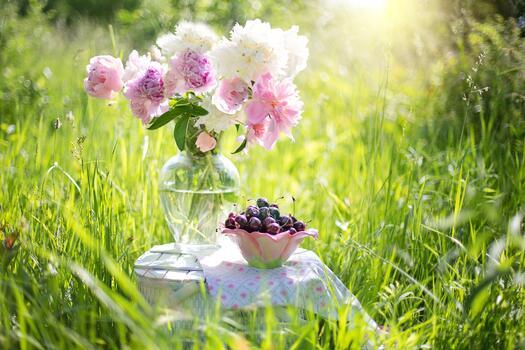 Фото бесплатно зелёный, летние цветы, ботаника