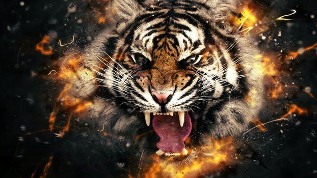 Photo free fantasy, beast, fangs