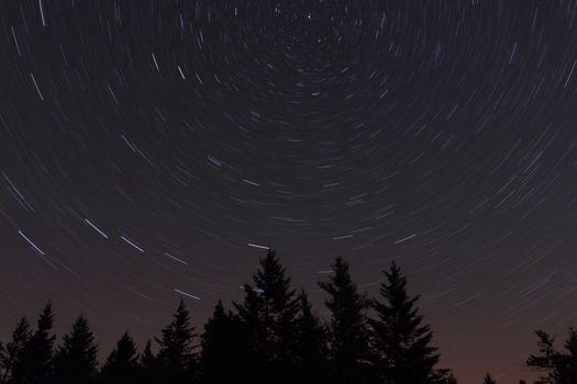 Бесплатные фото природа,пейзаж,звезда ночь,лес,звезды