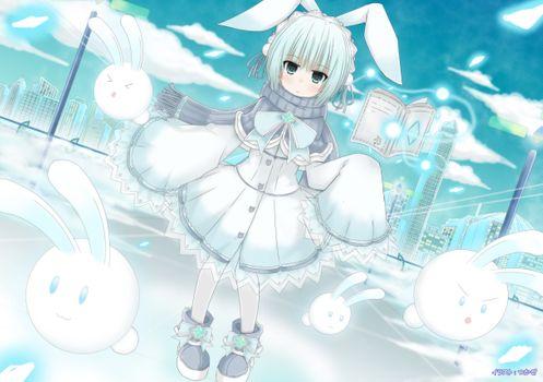 Photo free anime, girl, animal ears