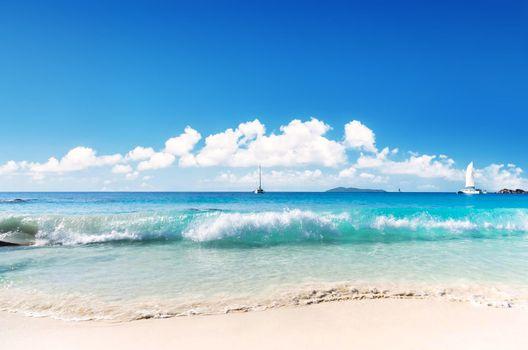 Фото бесплатно море, пляж, яхты