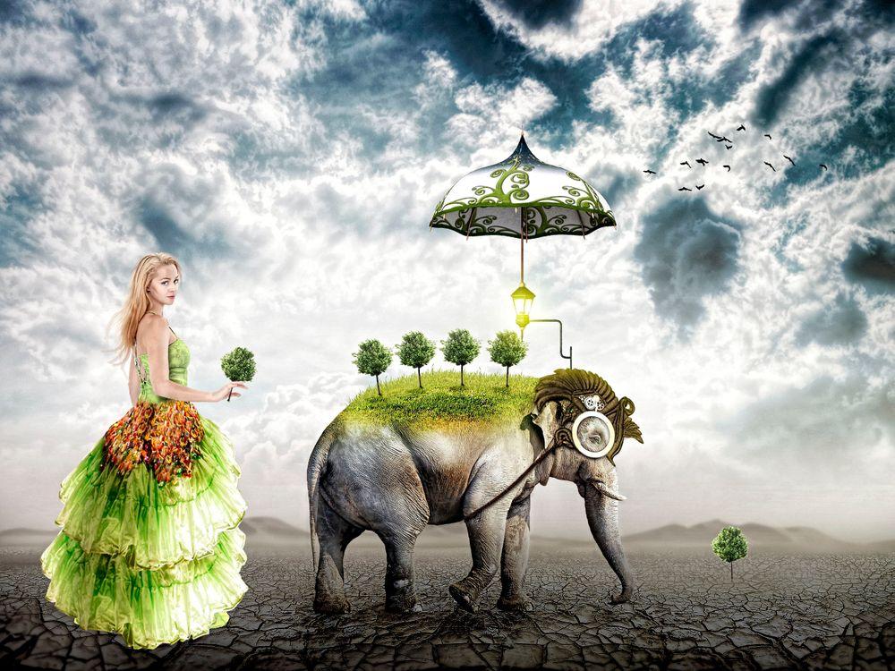 Фото бесплатно пустыня, девушка, слон, зонтик - на рабочий стол