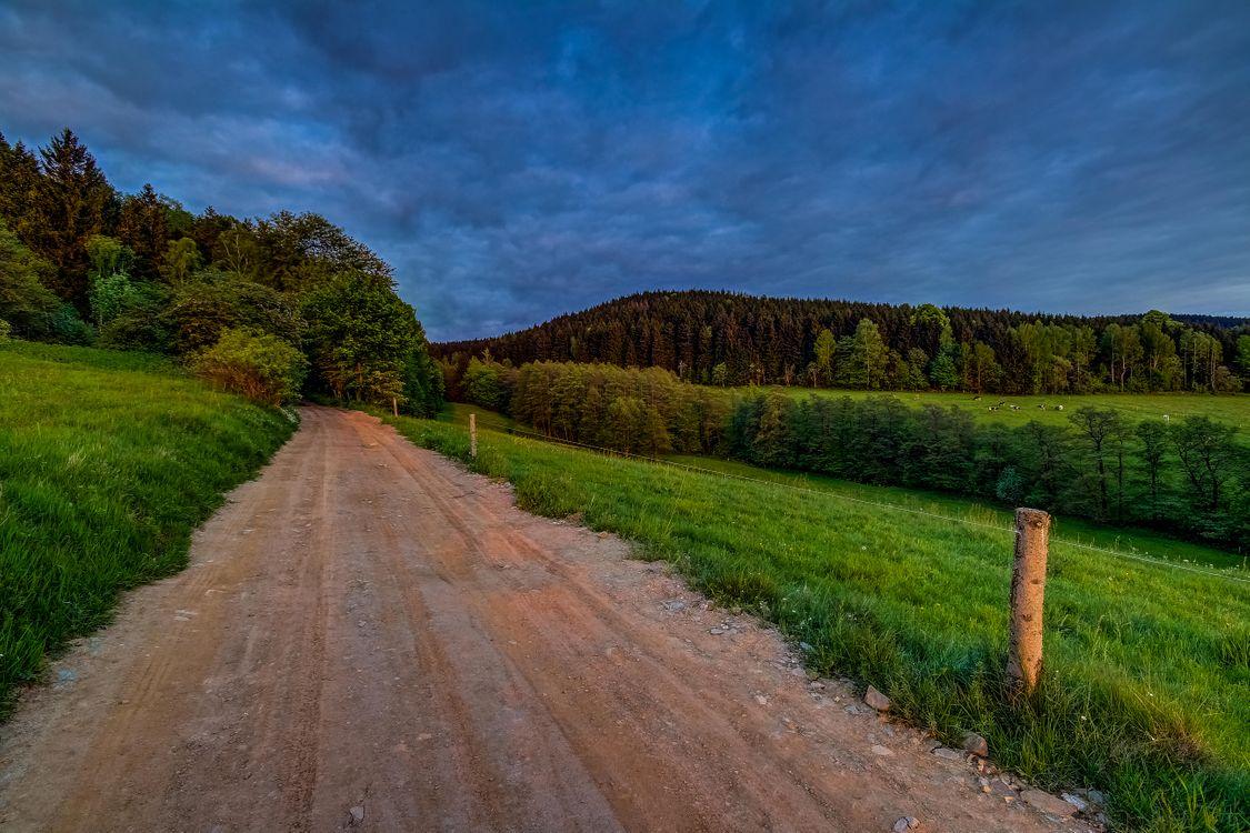 Фото бесплатно поле, дорога, деревья, холмы, пейзаж, пейзажи