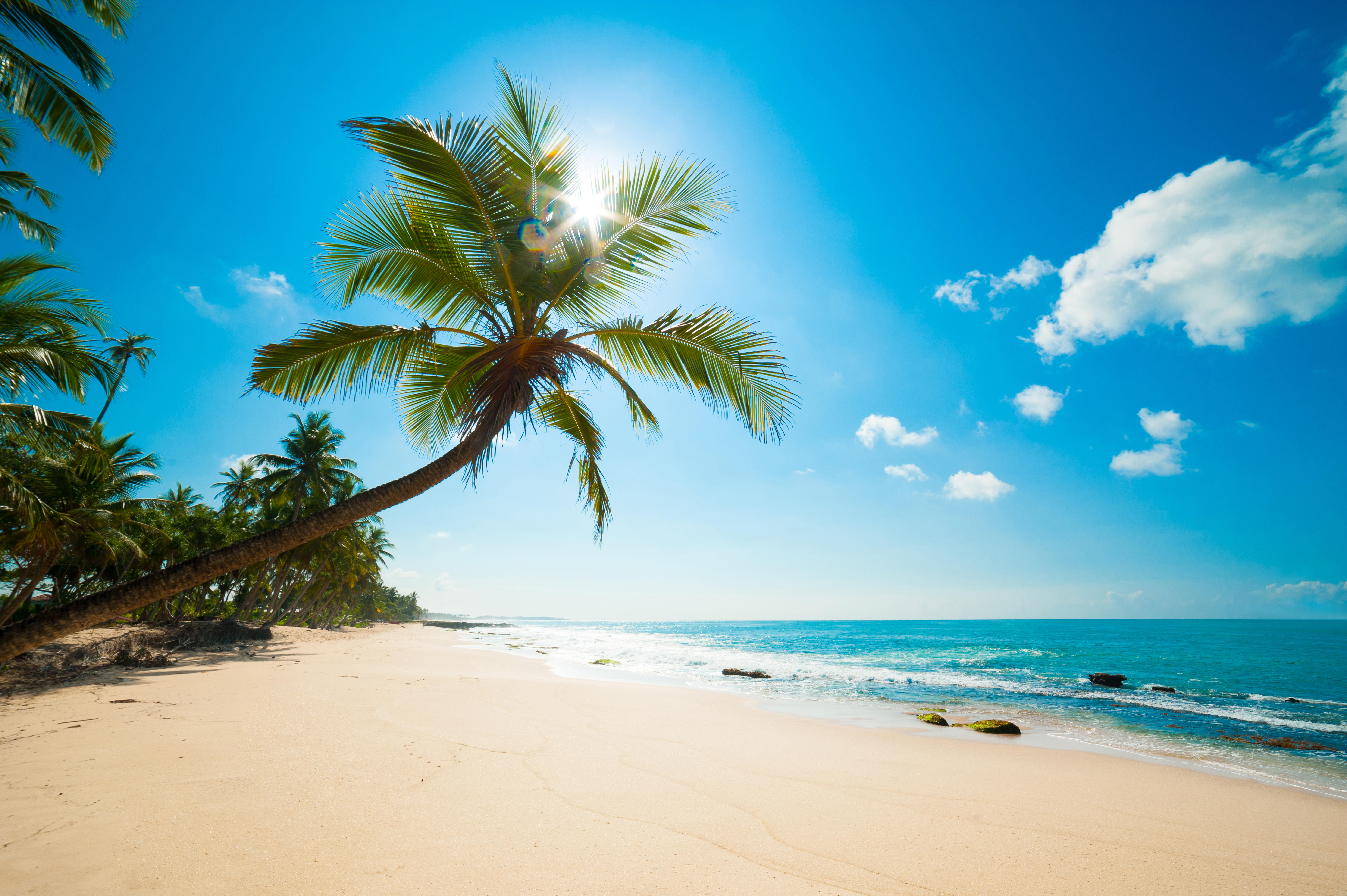 Обои тропики, море, пляж, Карибы
