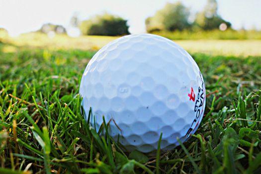Фото бесплатно трава, спорт, отдых
