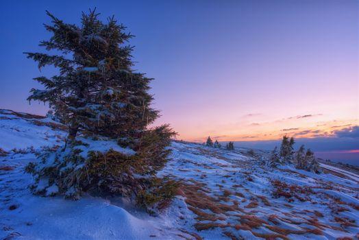 Фото бесплатно снег, горы, закат