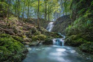 Фото бесплатно деревья, парк, водопад