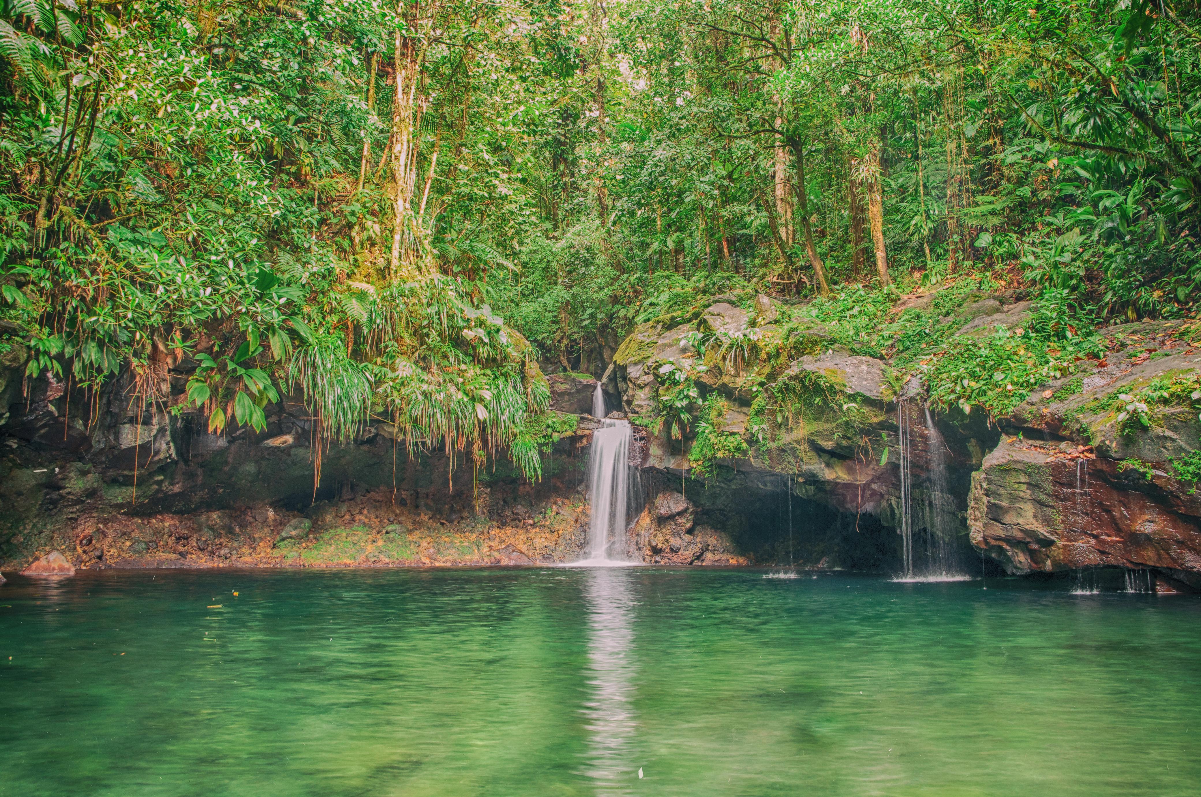 Обои водопад, водоём, лес, джунгли