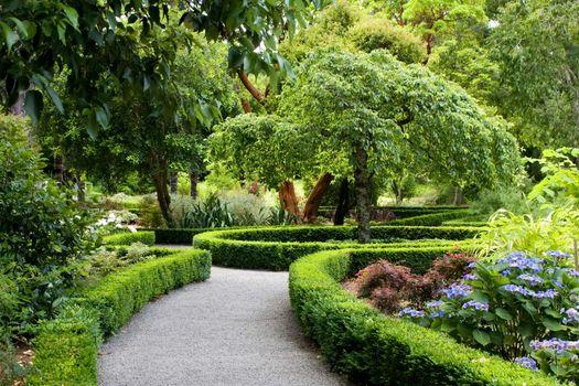 Photo free New Zealand, park, trees