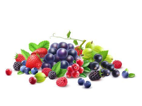 Photo free food, grapes, currants