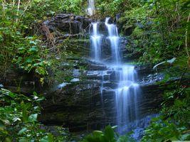 Фото бесплатно водопад, лес, скалы, растения, природа, пейзаж