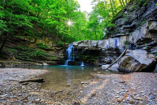 Заставки лес, деревья, водопад