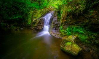 Фото бесплатно водопад, пейзаж, растения