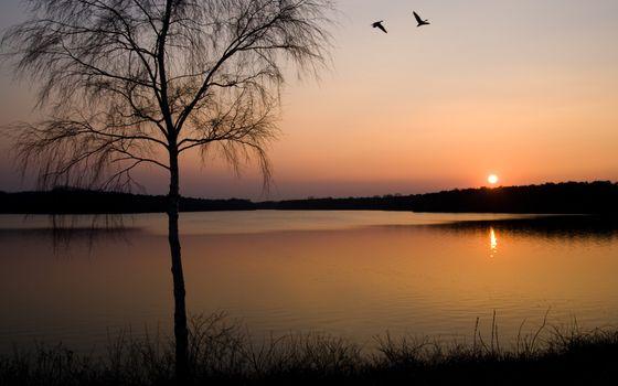 Фото бесплатно вечер, природа, отражение