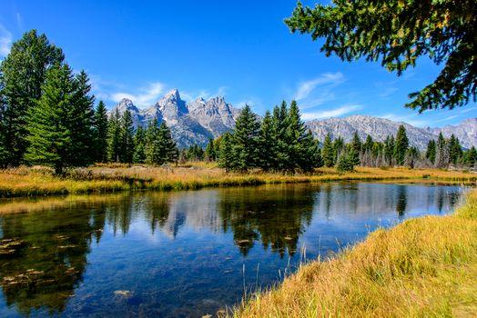 Фото бесплатно Вайоминг, деревья, горы
