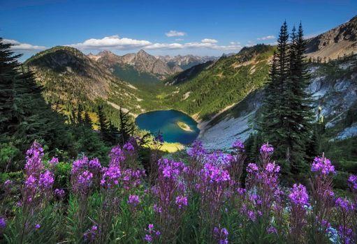 Photo free Lake Ann, trees, landscape