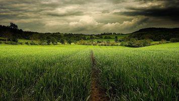 Бесплатные фото закат,поле,холмы,трава,деревья,пейзаж