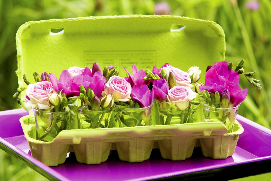Фото бесплатно roses, rozy, freziya, цветы