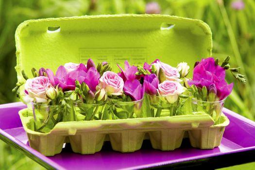 Фото бесплатно roses, rozy, freziya