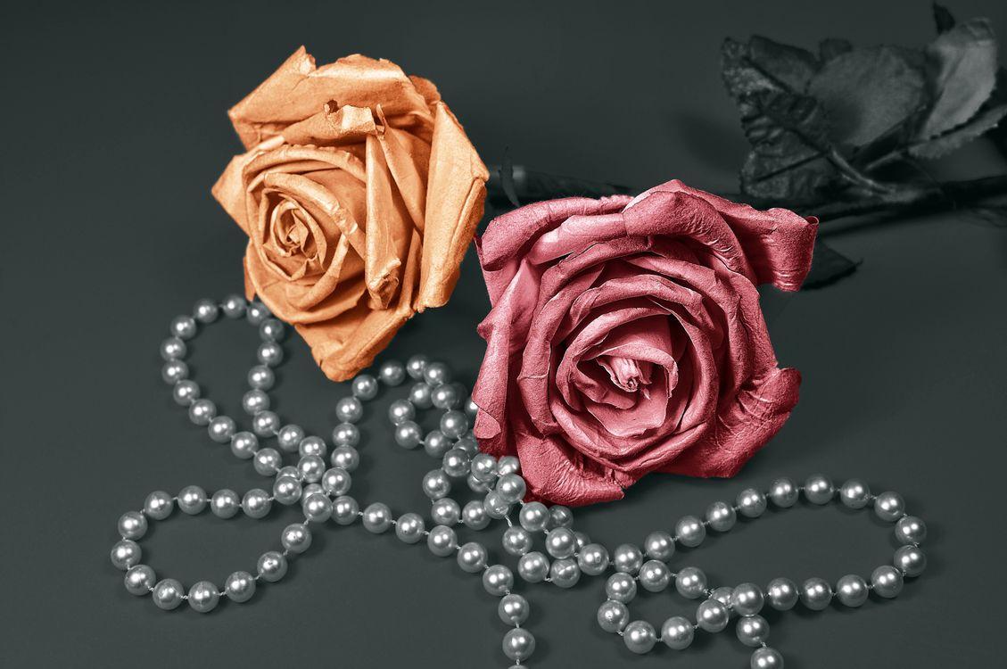 Розы из бумаги · бесплатное фото