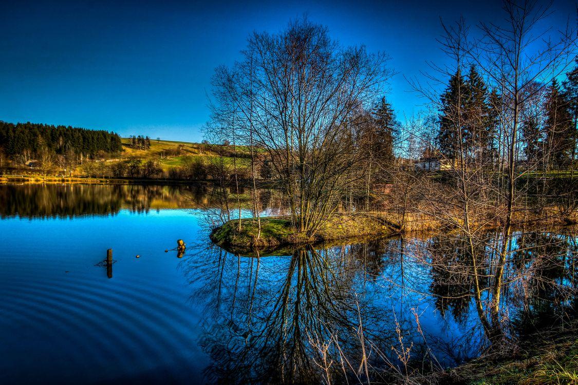 Фото бесплатно озеро, водоём, деревья, осень, пейзаж, пейзажи
